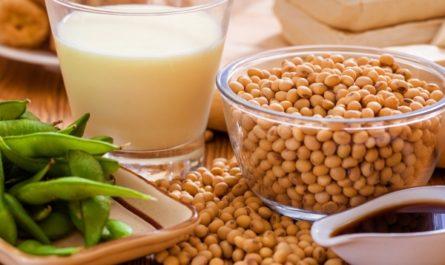 Соя – это полезный или вредный продукт