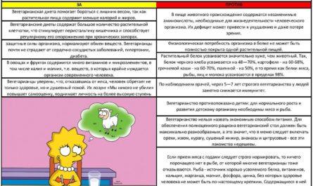 otkaz-ot-myasa-pljusy-minusy-vegetarianstva-dlya-organizma-2
