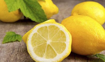 polza-i-vred-limona-11-faktov-o-tom-kakoe-dejstvie-on-okazyvaet-na-organizm-cheloveka-2