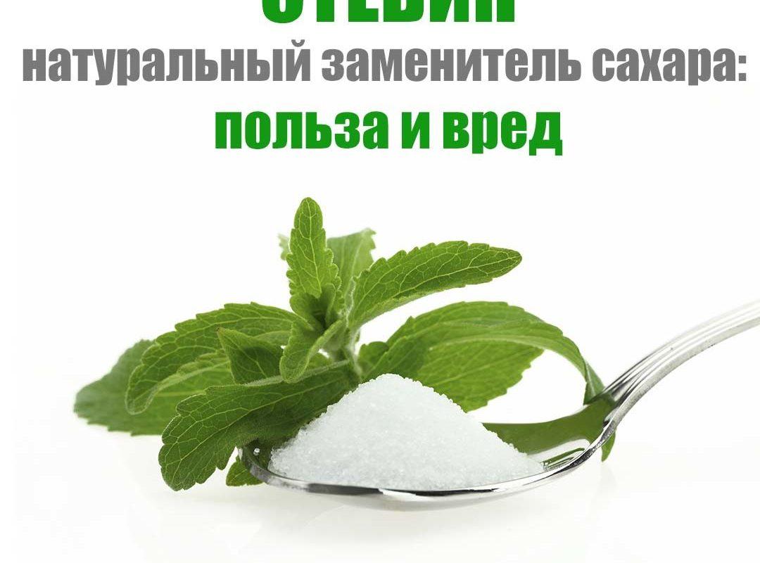 steviya-zamenitel-sahara-polza-i-vred-protivopokazaniya-2