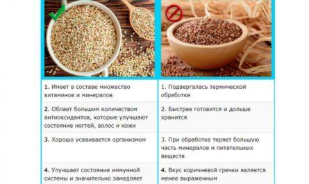 v-chem-otlichie-zelenoj-grechki-ot-korichnevoj-2