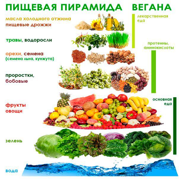 vegany-kto-eto-takie-i-chto-oni-edyat-veganstvo-prostymi-slovami-2