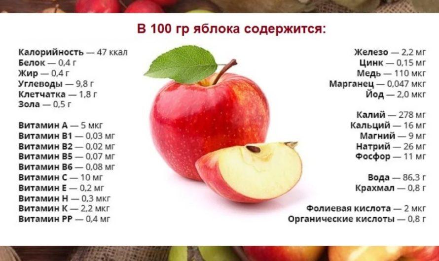 Яблоко — описание, состав, калорийность и пищевая ценность