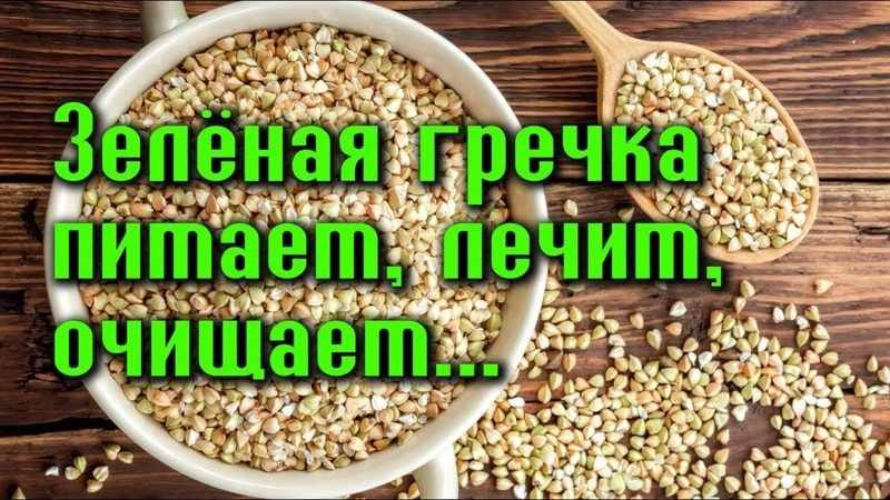 zelenaya-grechka4-7071760